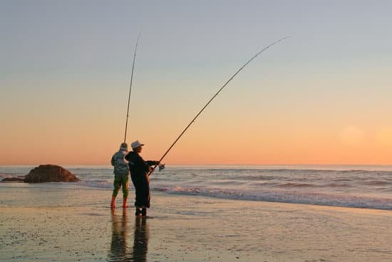 Is It Better to Fish at a High Tide or a Low Tide?